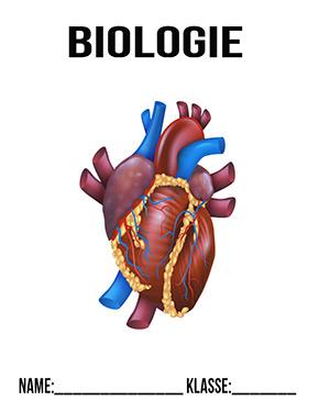 Deckblatt Bio Herz