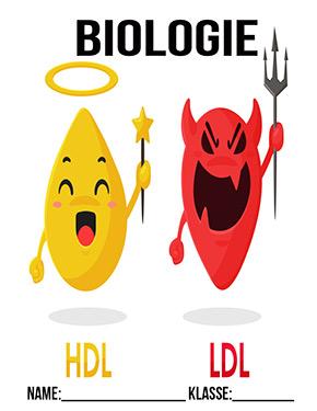 Deckblatt Biologie Cholesterin