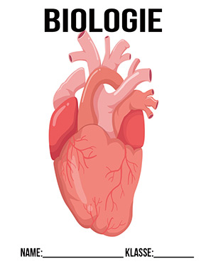 Deckblatt Biologie Herz