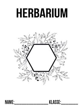 Deckblatt Herbarium Variante 3