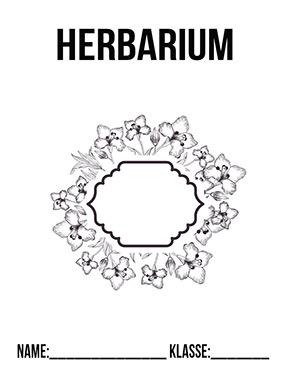 Deckblatt Herbarium Variante 4