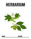 Herbarium Ahorn Deckblatt
